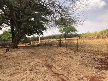 Comprar Rural / Sítio em Jardinópolis R$ 1.600.000,00 - Foto 13