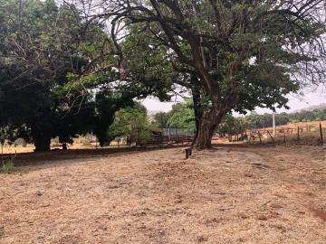 Comprar Rural / Sítio em Jardinópolis R$ 1.600.000,00 - Foto 14