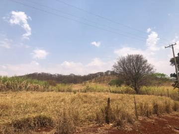 Comprar Rural / Sítio em Jardinópolis R$ 1.600.000,00 - Foto 15