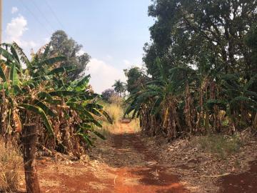 Comprar Rural / Sítio em Jardinópolis R$ 1.600.000,00 - Foto 16