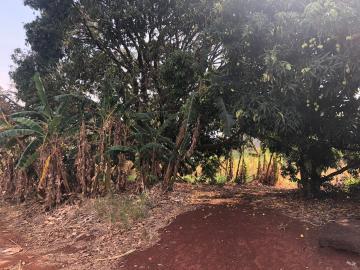 Comprar Rural / Sítio em Jardinópolis R$ 1.600.000,00 - Foto 17