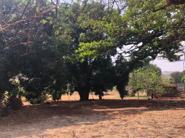 Comprar Rural / Sítio em Jardinópolis R$ 1.600.000,00 - Foto 20