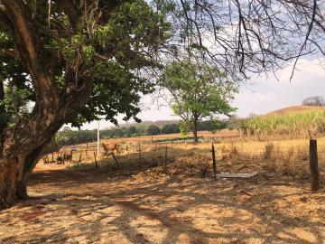 Comprar Rural / Sítio em Jardinópolis R$ 1.600.000,00 - Foto 22