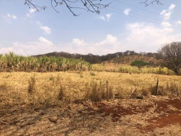 Comprar Rural / Sítio em Jardinópolis R$ 1.600.000,00 - Foto 24