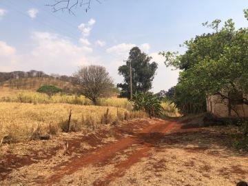 Comprar Rural / Sítio em Jardinópolis R$ 1.600.000,00 - Foto 25