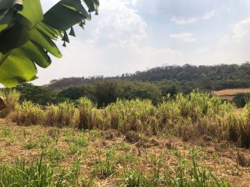 Comprar Rural / Sítio em Jardinópolis R$ 1.600.000,00 - Foto 29